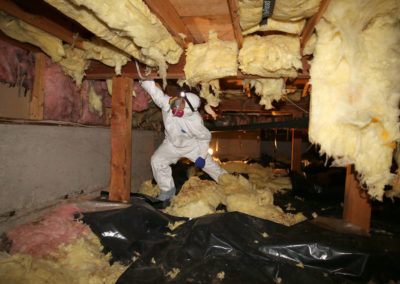 Crawlspace Cleaning Services
