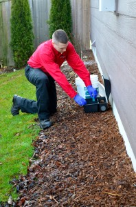 rats & mice removal, crawl space specialists