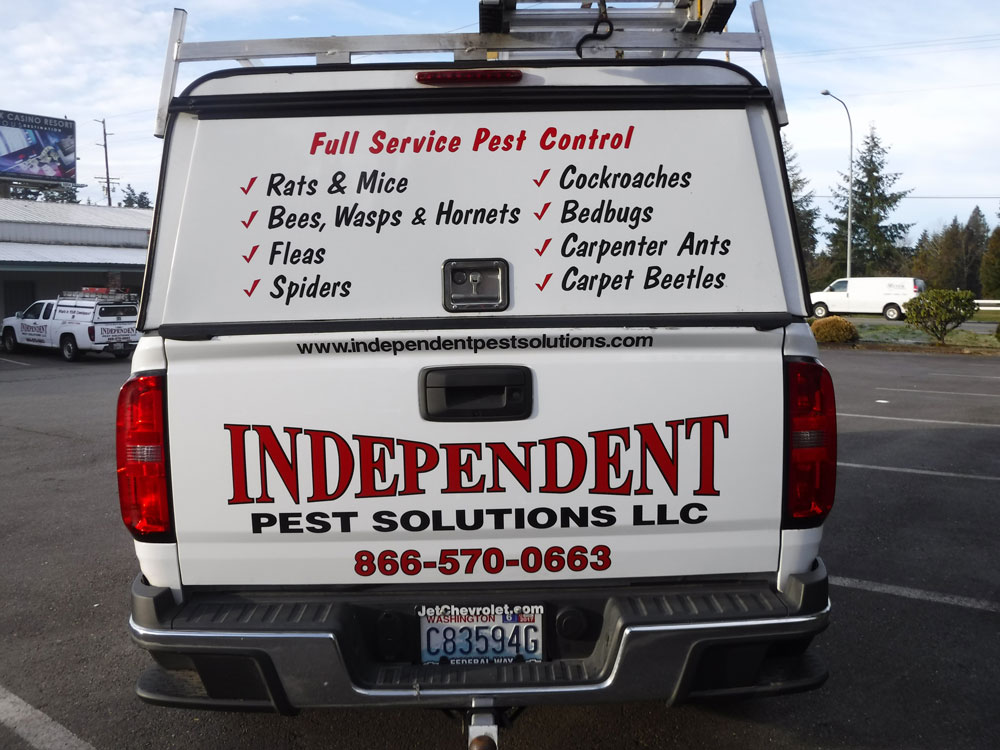 pest control coupons